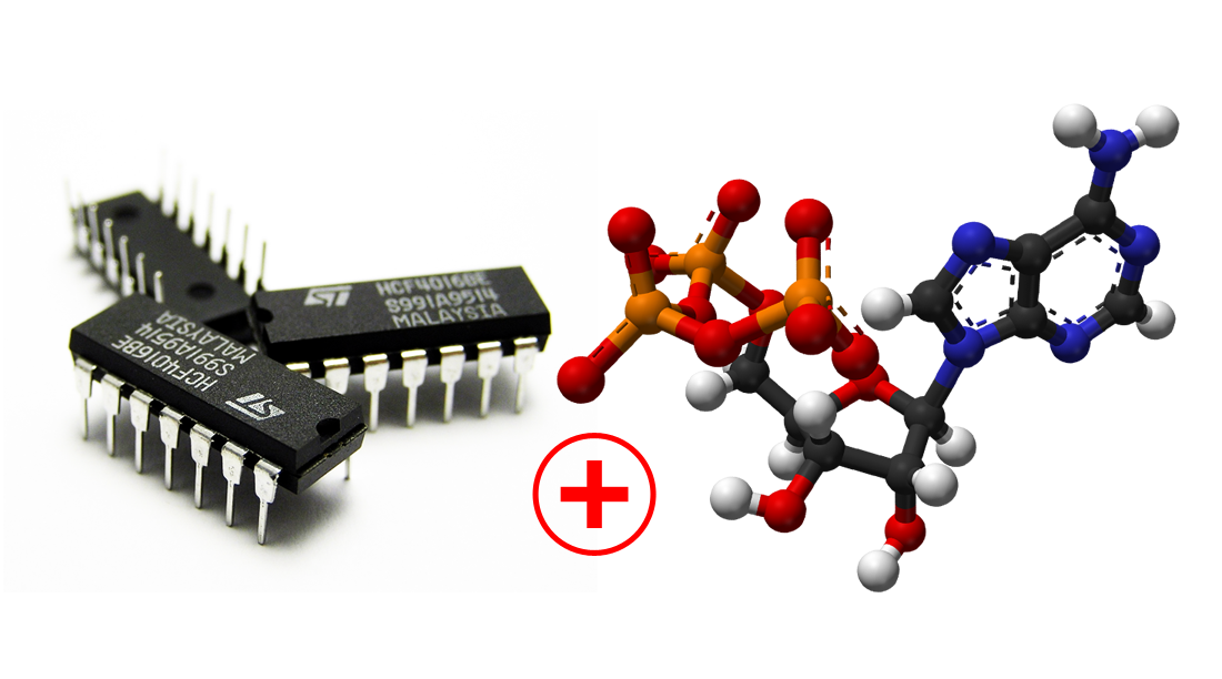 ATP Powered Integrated Circuit! - Columbia University ...