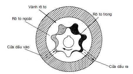 Hoạt động của bơm dầu kiểu rô to