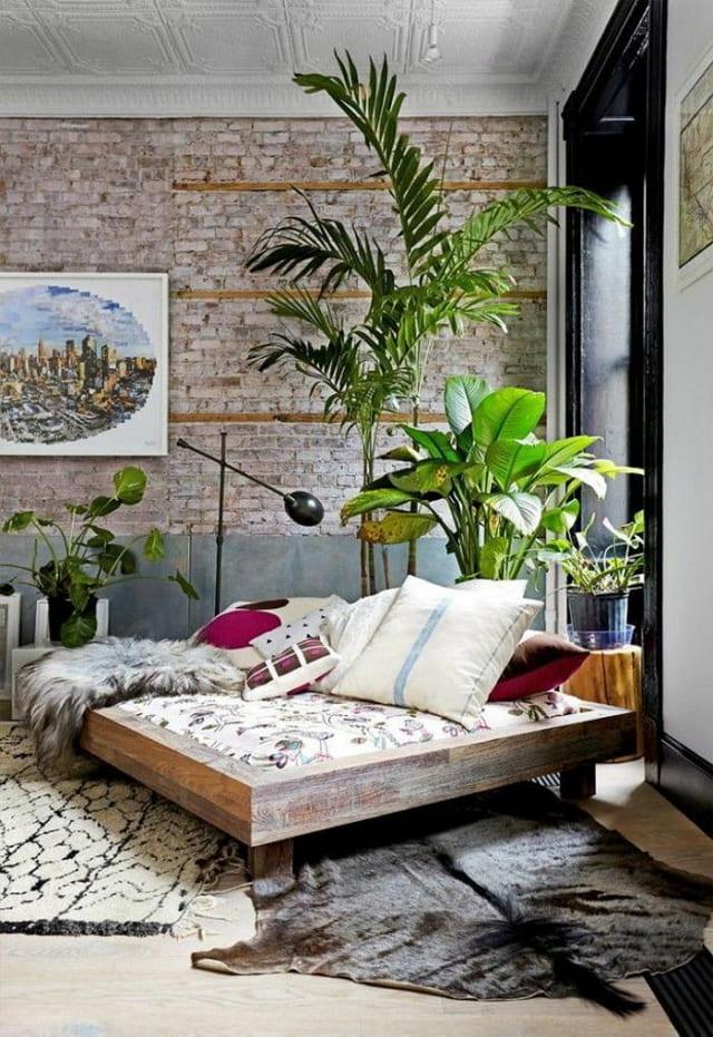 gambar tanaman hias kamar tidur