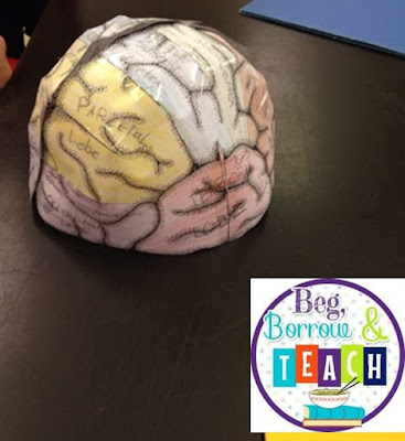 Growth Mindset, Art, and Science Activity: Brain Hats.