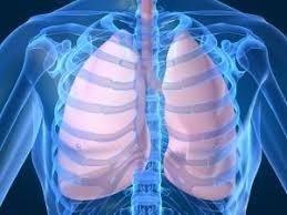 Penyakit Paru Paru Menahun Black Lung Dapat Disebabkan Oleh download%2B%25281%2529
