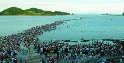 Fenomena Laut Terbelah Dua di Korea Selatan