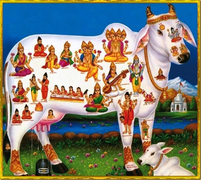 Formação religiosa da Índia