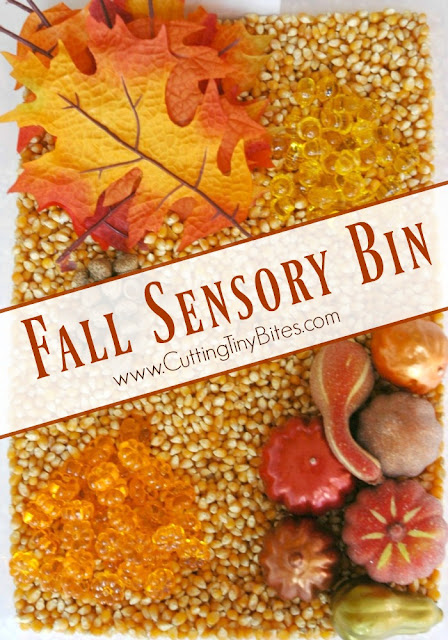 Sensory bin for fall. Great for toddlers, preschoolers, or older children!