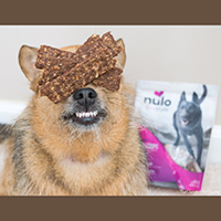 Nulo Freestyle Jerky Strips Dog Treats Review