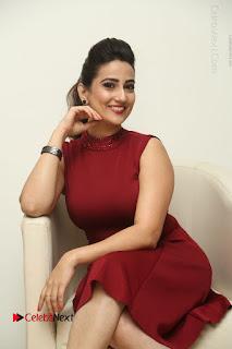Telugu Tollywood Anchor Manjusha Pos in Red Short Dress  0040.JPG