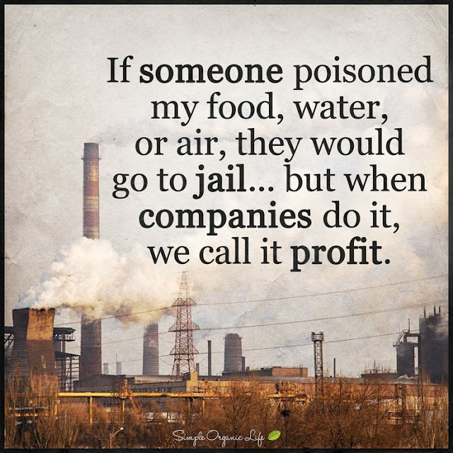 If someone poisoned my food water or air they would go to jail but when companies do it we call it profit. quotes simple organic life