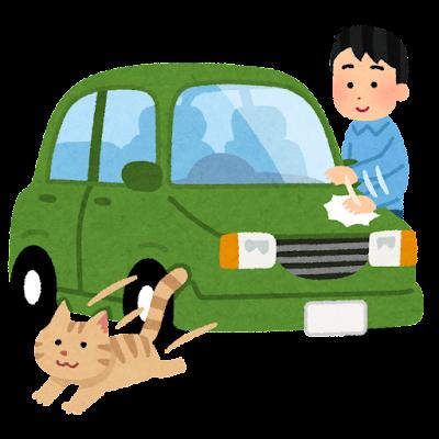 男性と飼い猫と車