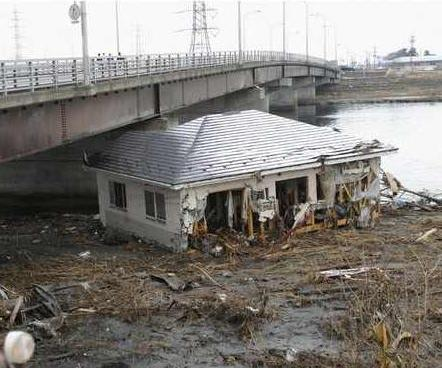 Performance of Japanese Structures against Honshu Earthquake
