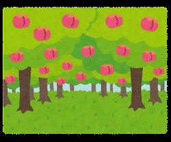 果樹園のイラスト(桃)
