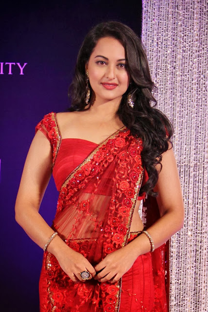 Sonakshi Sinha saree Dresses and Makeup Styles
