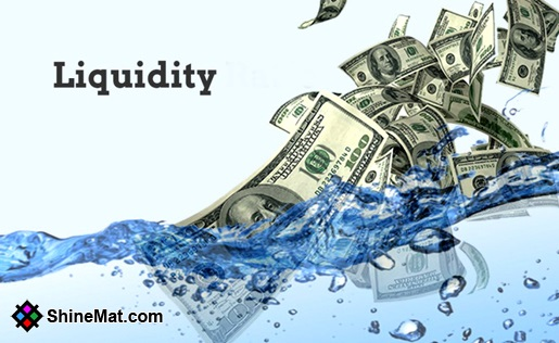 What is money liquidity