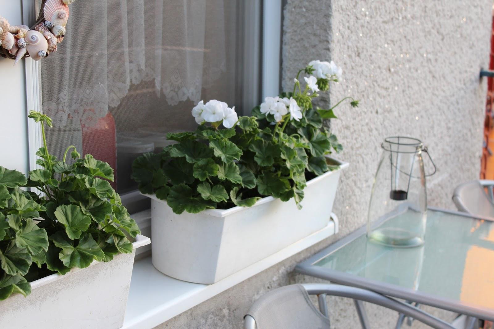 Mini Kühlschrank Für Terrasse : Kleiner kühlschrank für terrasse kühlschrank kaufen darauf