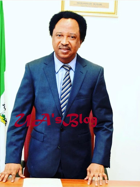 Atiku vs Buhari: Shehu Sani reacts to service chiefs' attendance of APC 'Next Level' campaign launch