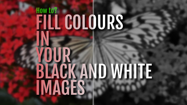 How to Fill Colors in your Black and White images?