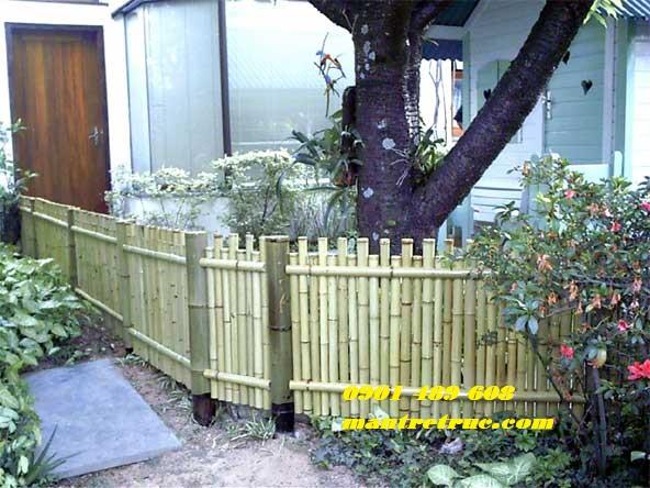 Mẫu hàng rào tre 6
