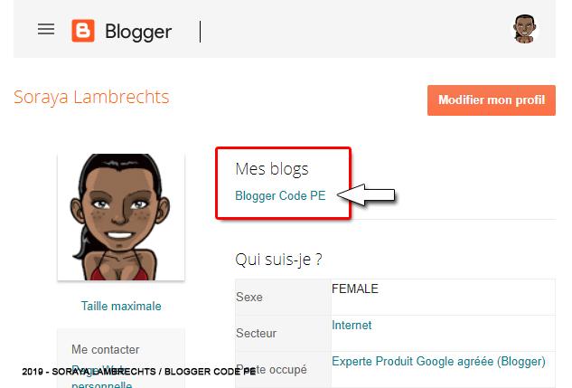Afficher la liste des blogs sur le profil.