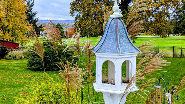 image of a bird feeder, behind which is a vista of colorful autumn trees