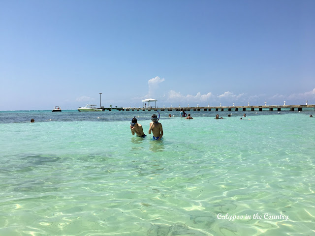 Snorkeling Rum Point