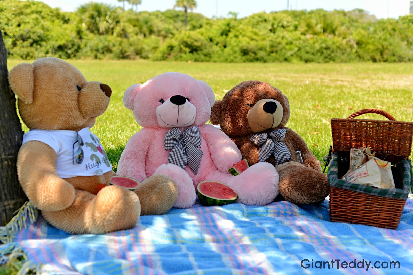 Giant Teddy Bear Picnic on International Picnic Day