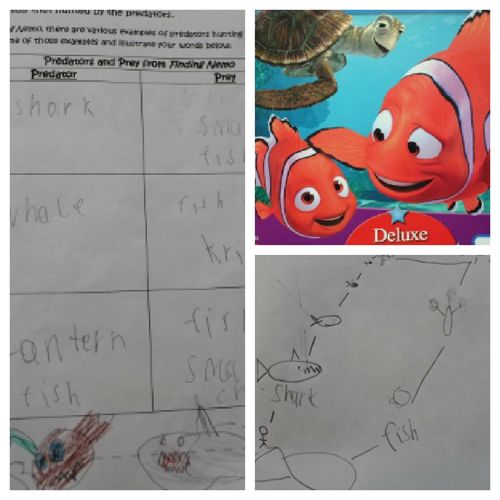 Coral Reef Unit And Make A Splash Review