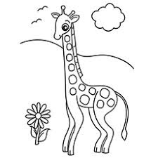 Adorable Baby Giraffe And Flower Coloring Pages