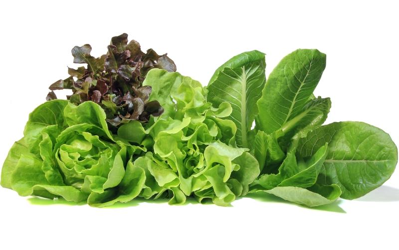 Verduras ajudam contra Gripe e Resfriado