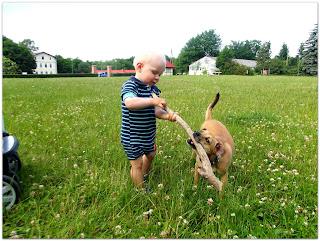 Kiedy mały alergik chce mieć zwierzątko (rasy psów i kotów, które nie powinny uczulać).