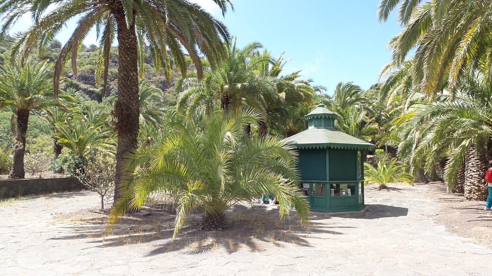 Gran canaria reise info der botanische garten jard n for Fred olsen telefono oficina las palmas