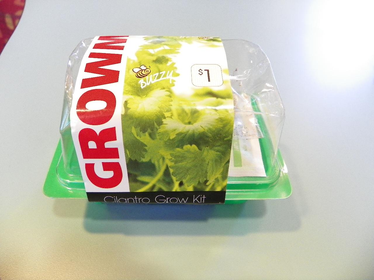 Rachels Blog Target 100 Cilantro Grow Kit Easy Peasy
