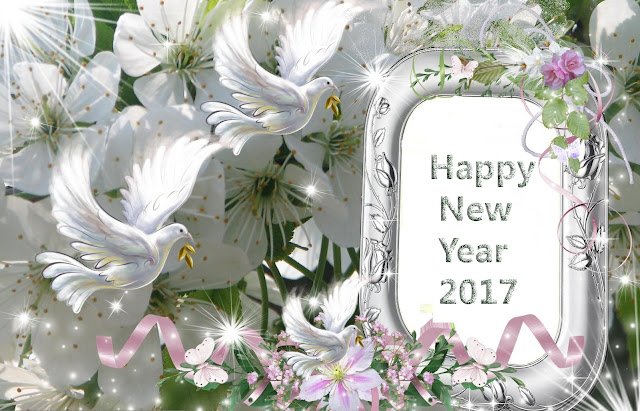Happy New Year 2017 Greetings HD Wallpapers Free Download