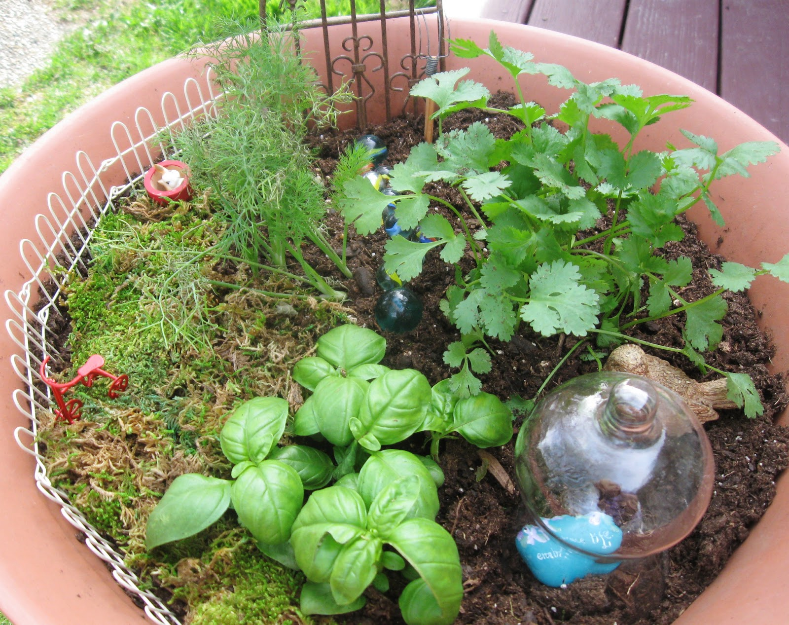 How To Create A Fairy Herb Garden