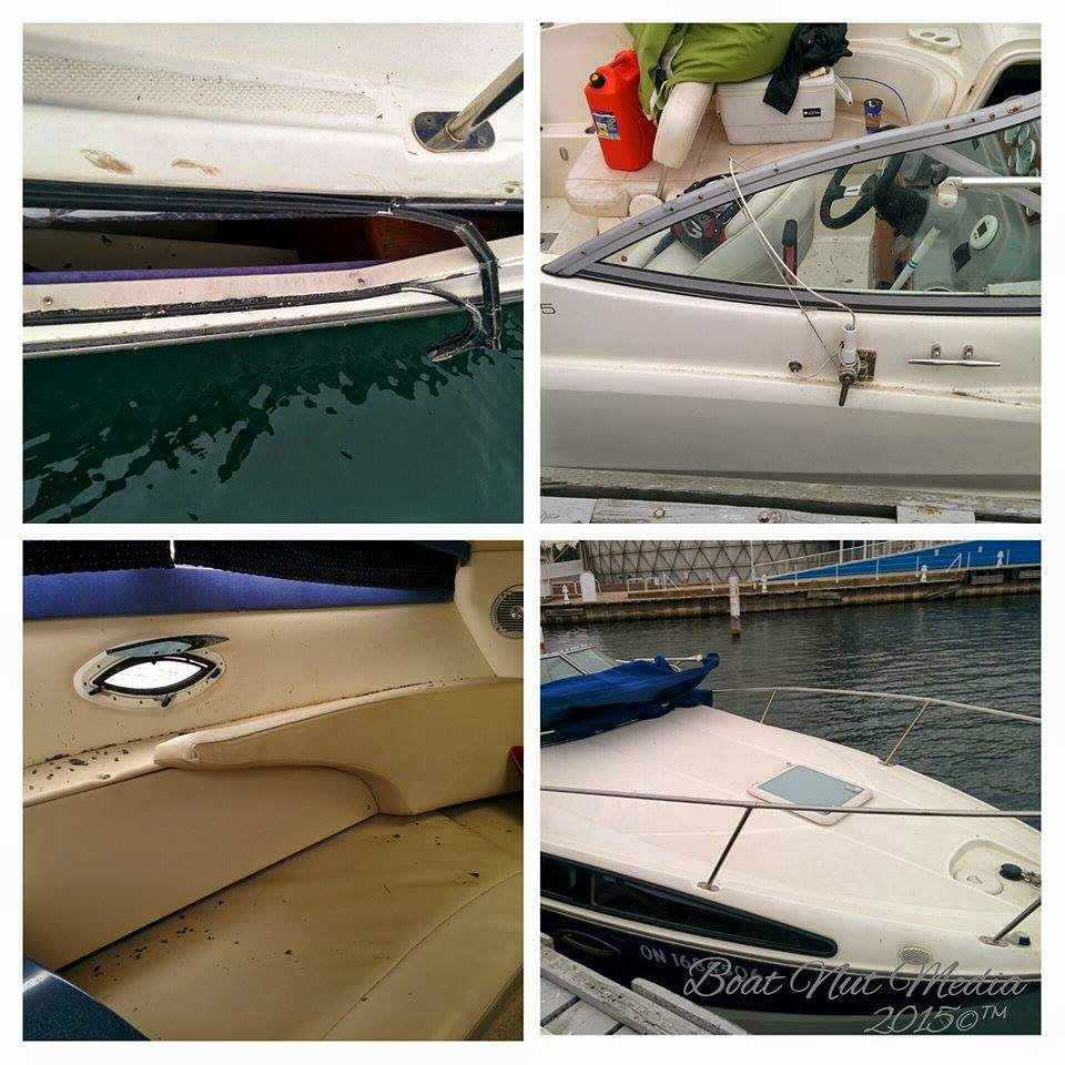 Bayliner Owners Club - Displaying items by tag: Bayliner - Bayliner