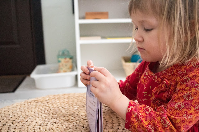 A look at some of the Montessori friendly language work we are using at home at 3-years-old