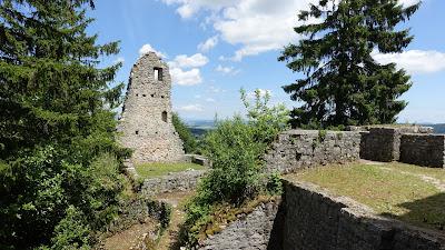 Reste der Farnsburg