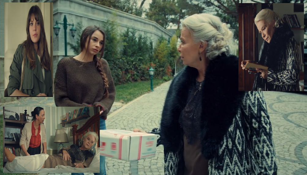 Mireasa din Istanbul episodul 27 rezumat