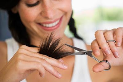 trimming hair stimulates growth