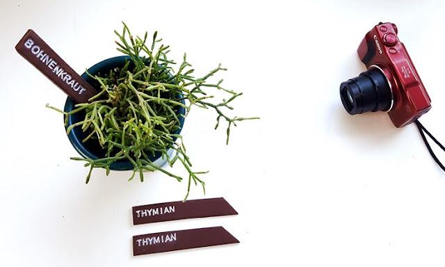 drei Pflanzenstecker mit Pflanze und rotem Fotoapparat