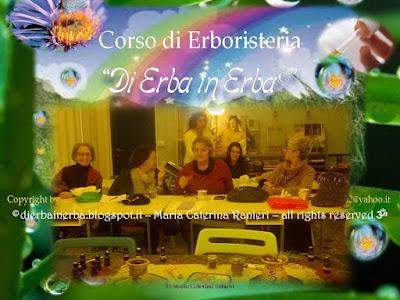 ©dierbainerba.blogspot.it – Maria Caterina Ranieri – all rights reserved ॐ