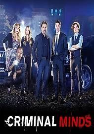 Mentes criminales temporada 11 Online