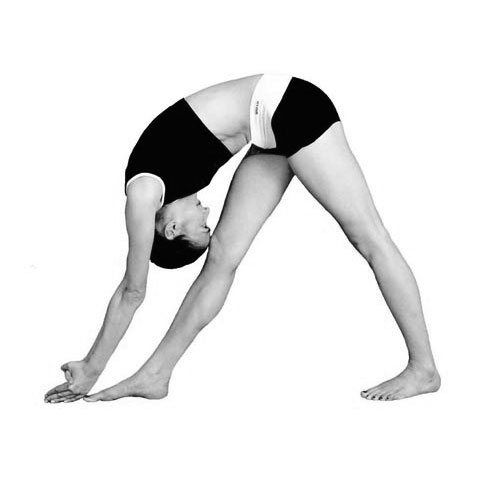 The Best Yoga For You Dandayamana-Bibhaktapada