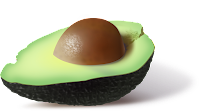palta, aguacate, abacate