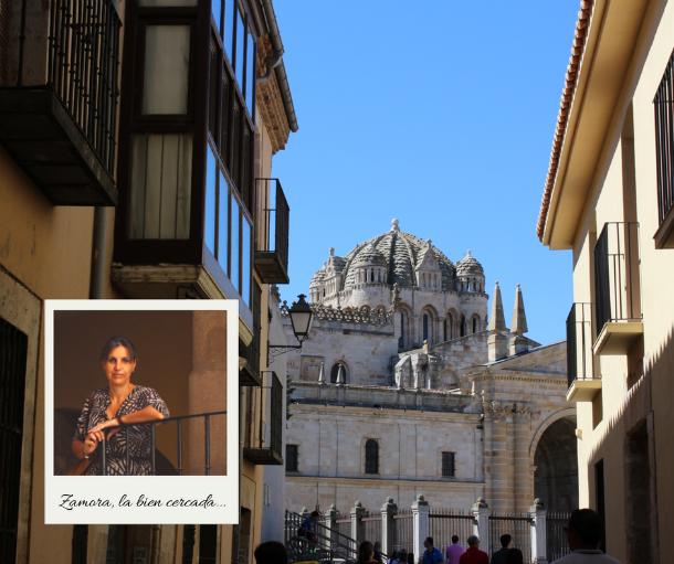 zamora la bien cercada catedral rua de los notarios