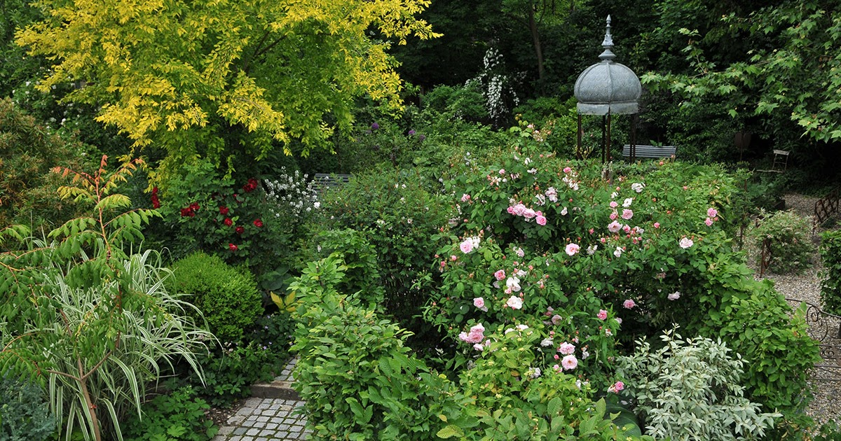 Ambiance Jardin Portes Ouvertes Au Jardin De Pierrette Et