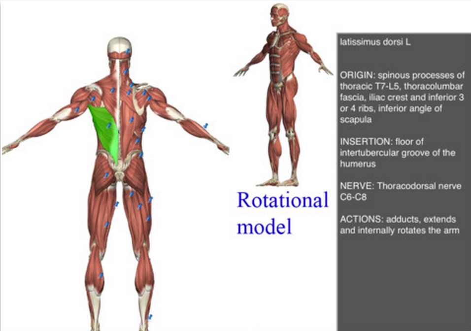 Great iPad Apps for learning Science Through 3D Technologies and ...