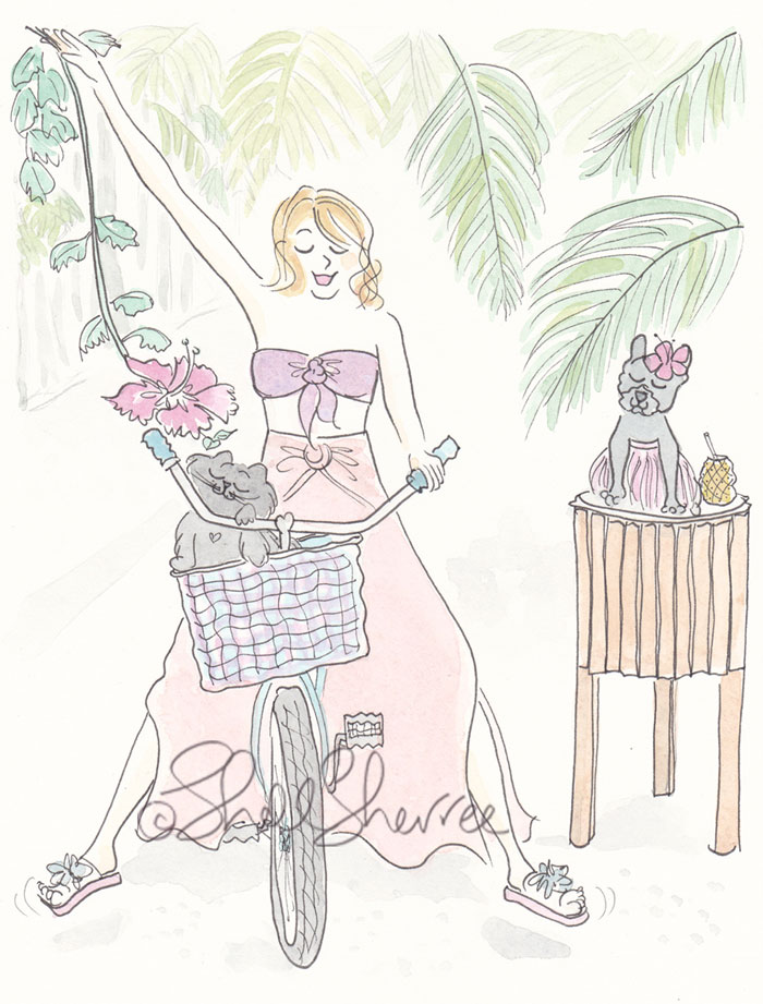Island Cycling with Hula Frenchie and Black Cat illustration © Shell Sherree all rights reserved