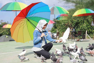 Lokasi Taman Wisata Burung Dara Aceh Besar