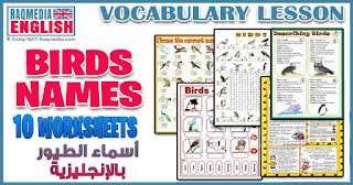activities-wordsearch-ESL-EFL-downloadable-printable-worksheets-practice-exercises-and-activities-to-teach-about-birds-picture-dictionaries