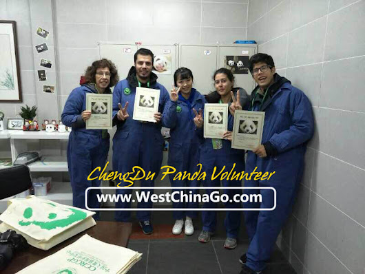 Why WestChinaGo is best Choice for China Panda Volunteer