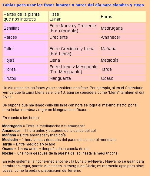 Calendario dieta de la luna 2017 tabla fases lunares for Calendario de fases lunares 2016